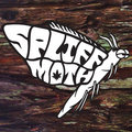 Spliff Moth image