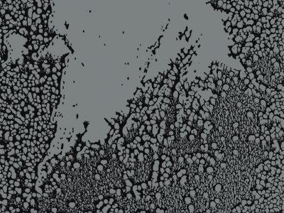 WALLS - Urals LP 500 copies Limited edition Grey vinyl main photo