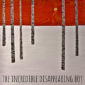 The Incredible Disappearing Boy image