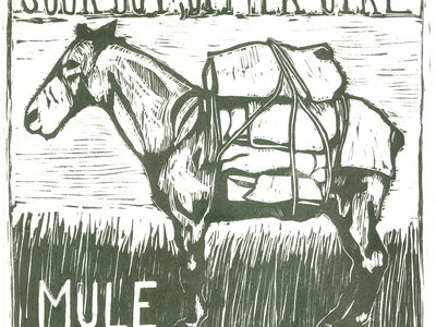 Mule Limited Edition Print main photo