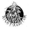 Night Auditor image