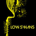 Low Swans image