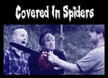 Covered In Spiders image