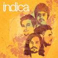 INDICA image