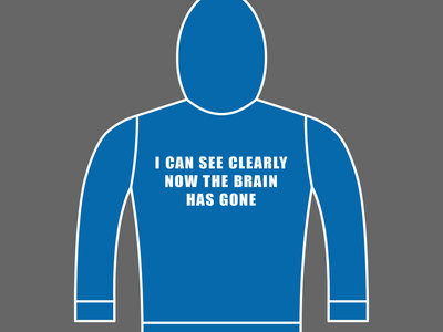 I CAN SEE CLEARLY NOW THE BRAIN HAS GONE - Unisex Hoodie - Various Sizes & Colours main photo