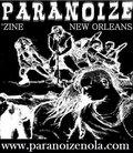 Paranoize Recordings image
