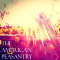 The American Peasantry image