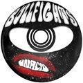 Bullfights on Acid image
