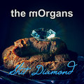 the mOrgans image