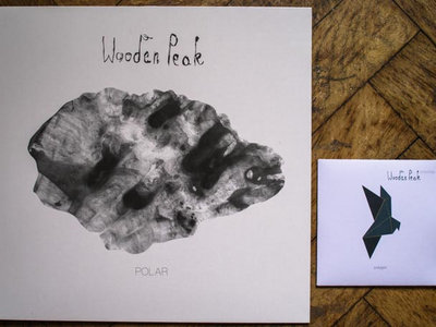 Polygon CD + Polar LP main photo