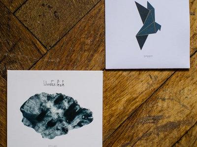 Polygon + Polar CD main photo
