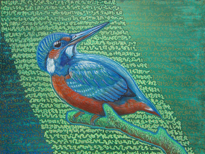 Kingfisher & Code main photo