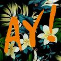 AY! image