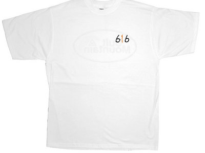 Embroidered Cult Mountain 616 T-Shirt. WHITE. main photo