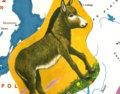 EurNoVision image