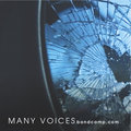 Many Voices image