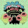 MOLARS image