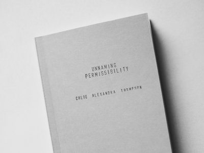 BST010: Chloe Alexandra Thompson, 'Unnaming Permissibility' main photo