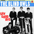 The Blind Owls image