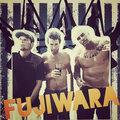 Fujiwara image