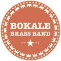 Bokale Brass Band image