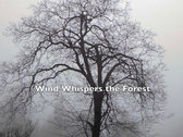 """The beautiful forest, mountains and skies of Idyllwild, with the 6 music tracks from the CD, """"Music from the Heart of the Forest"""" ~ free shipping (US only) International shipping available photo"""