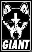 CAVE DWLR image