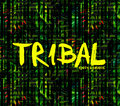TRIBAL image