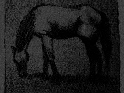 Black Horse T-shirt main photo