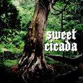 Sweet Cicada image