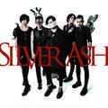 Silver Ash image