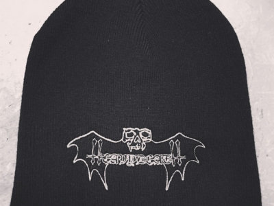 Logo embroidered hat main photo