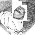 miguel a. garcía / xedh image