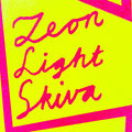 Zeon Light Skiva image