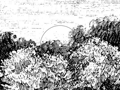 "12"" vinyl - PHORMA009 - Adam Craft - Ion (incl. A&S Remix) main photo"