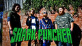 Shark Puncher image