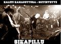 Kalevi Kamasuttura ja Soitinyhtye Sikapillu image