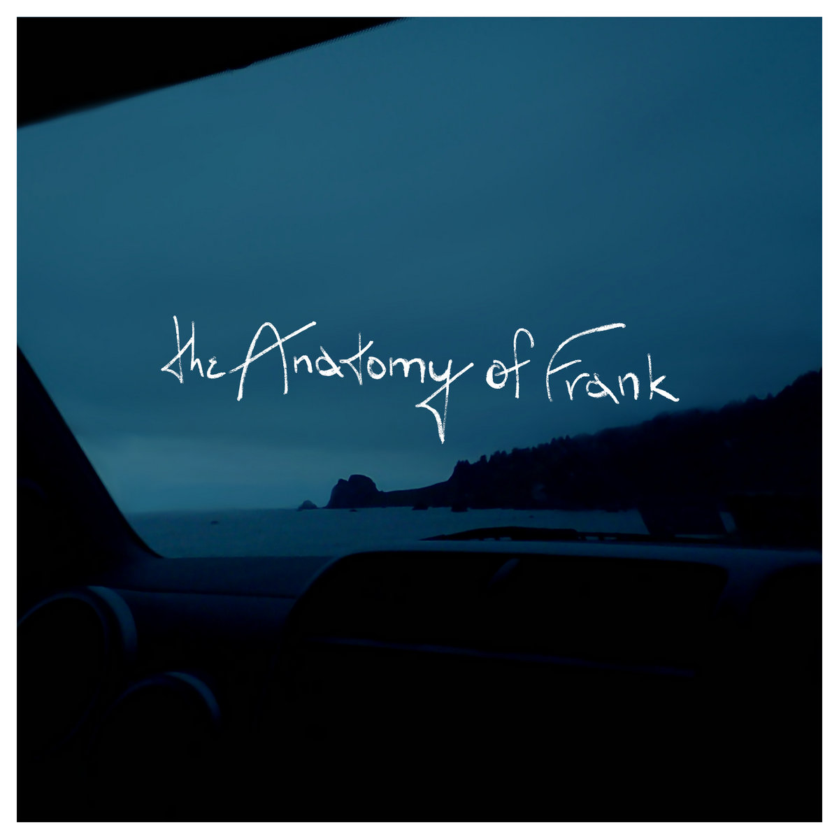 My Thick Skin | The Anatomy of Frank