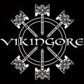 Vikingore image