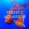 Perfect Aquarium image