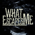 What Escapes Me image