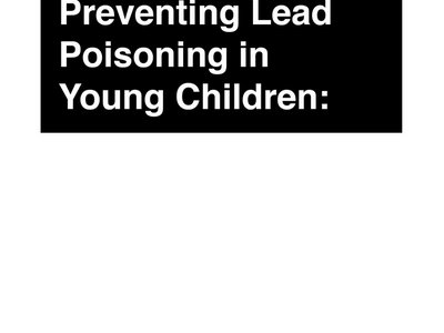 Preventing Lead Poisoning in Young Children: A DVD by Arms and Sleepers (DIGITAL DOWNLOAD) main photo
