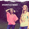 Sparrows Rising image