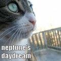 Neptune's Daydream image