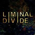 Liminal Divide image