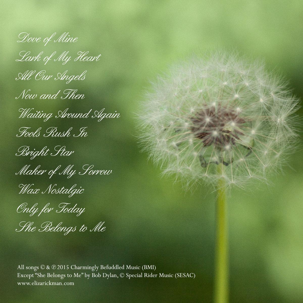 Dove of Mine | Eliza Rickman