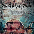 Snailfetus Kidney Sacrifice image