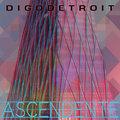 Digo Detroit image