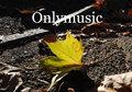 Onlymusic image