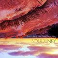 Souljunky image